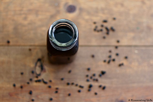 elderberry syrup for flu and allergy relief