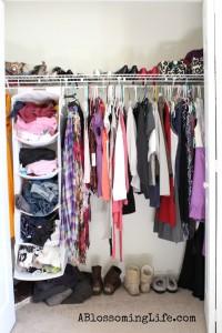 $0 Closet Organization