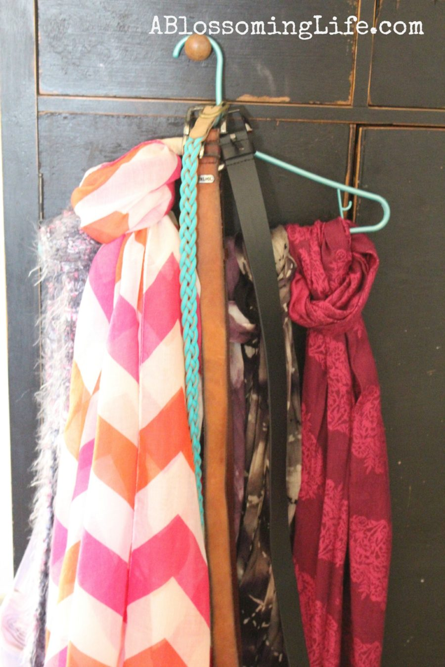 scarf and Belt Organization