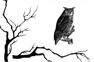DIY Happy Owloween Pillow