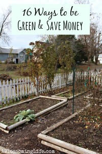 16 Ways to be Green and Save Money in 2014