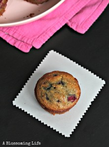 Raspberry Orange Muffins {Paleo}