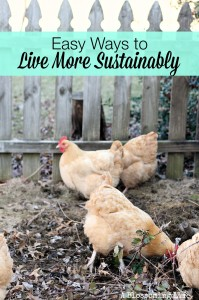 Easy Ways Live More Sustainably