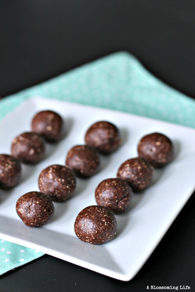 These Chocolate Coconut Cashew Bites are amazing!