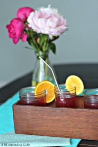 Homemade Soda: Orange Pomegranate Fizz