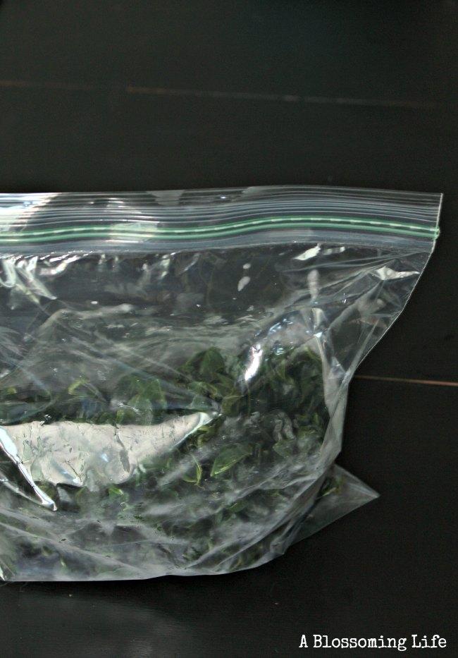 frozen kale in a ziplock bag for freezer storage