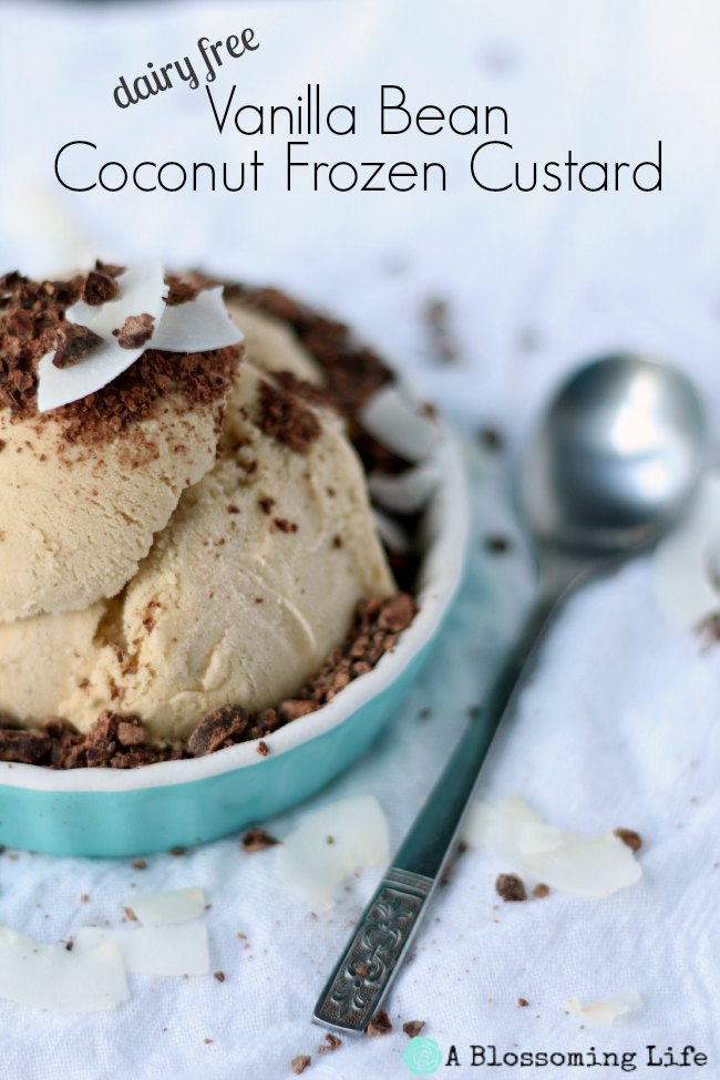 Vanilla Bean Coconut Frozen Custard