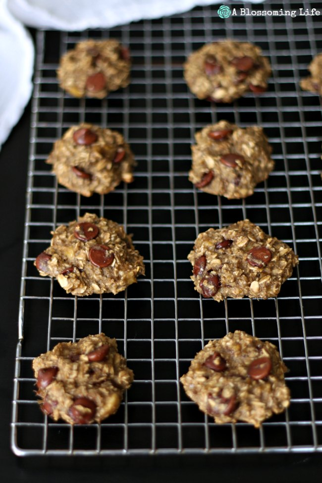 4 Ingredient Chocolate Chip Cookies