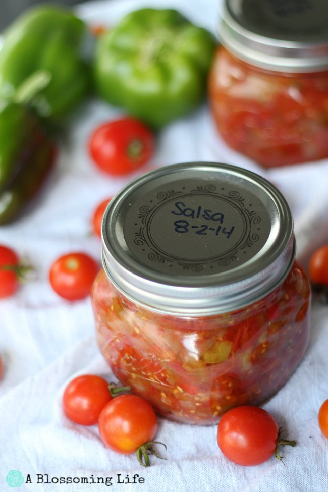 Canning Salsa: Our First Time