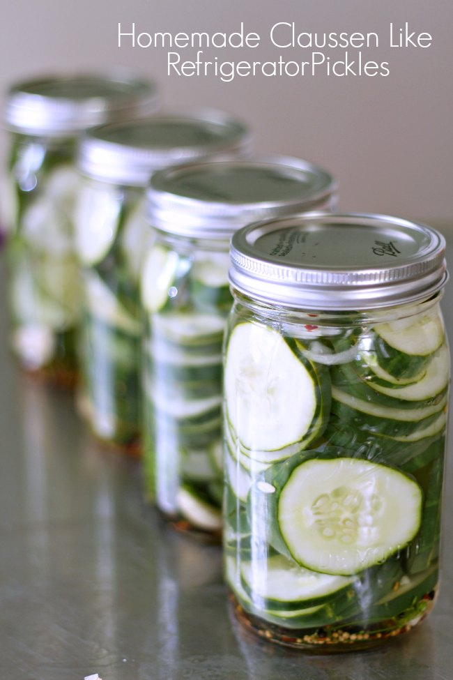 four jars of refrigerator dill pickles lined up behind one another