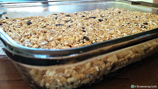 Cinnamon Raisin Granola Bars Recipe