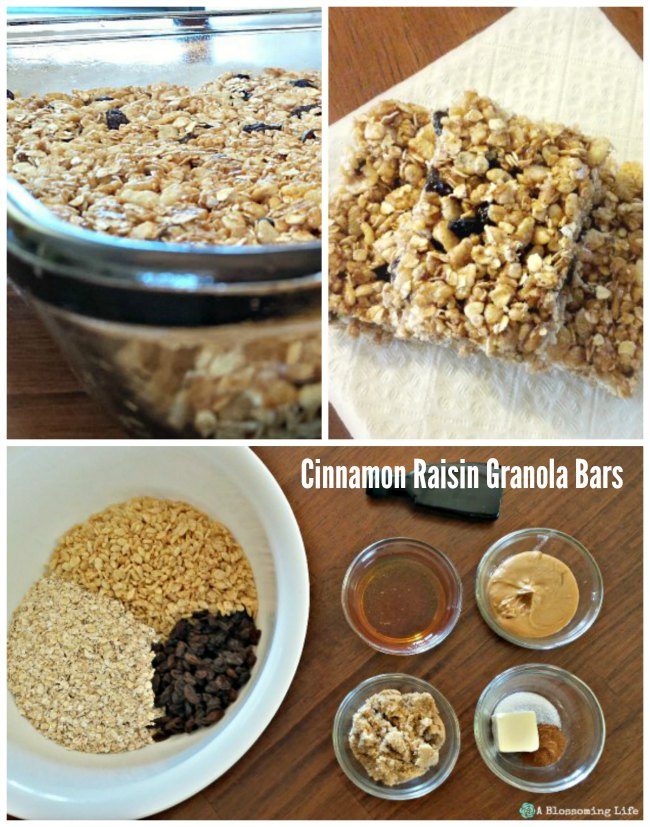 Libby's Cinnamon Raisin Granola Bars