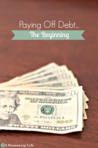 Paying Off Debt… The Beginning