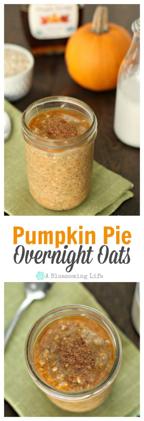Pumpkin Pie Overnight Oats C
