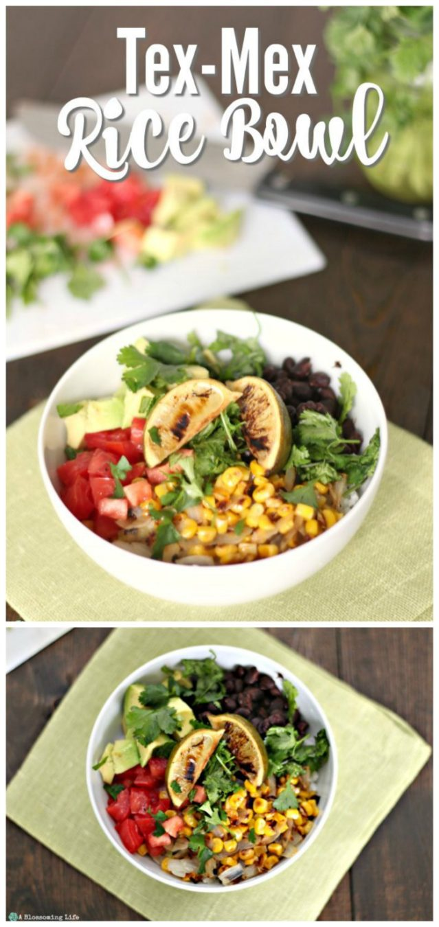 Tex-mex rice bowl long