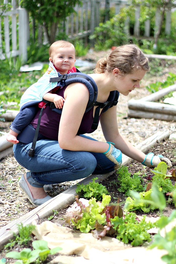 How to garden with a baby- wear them