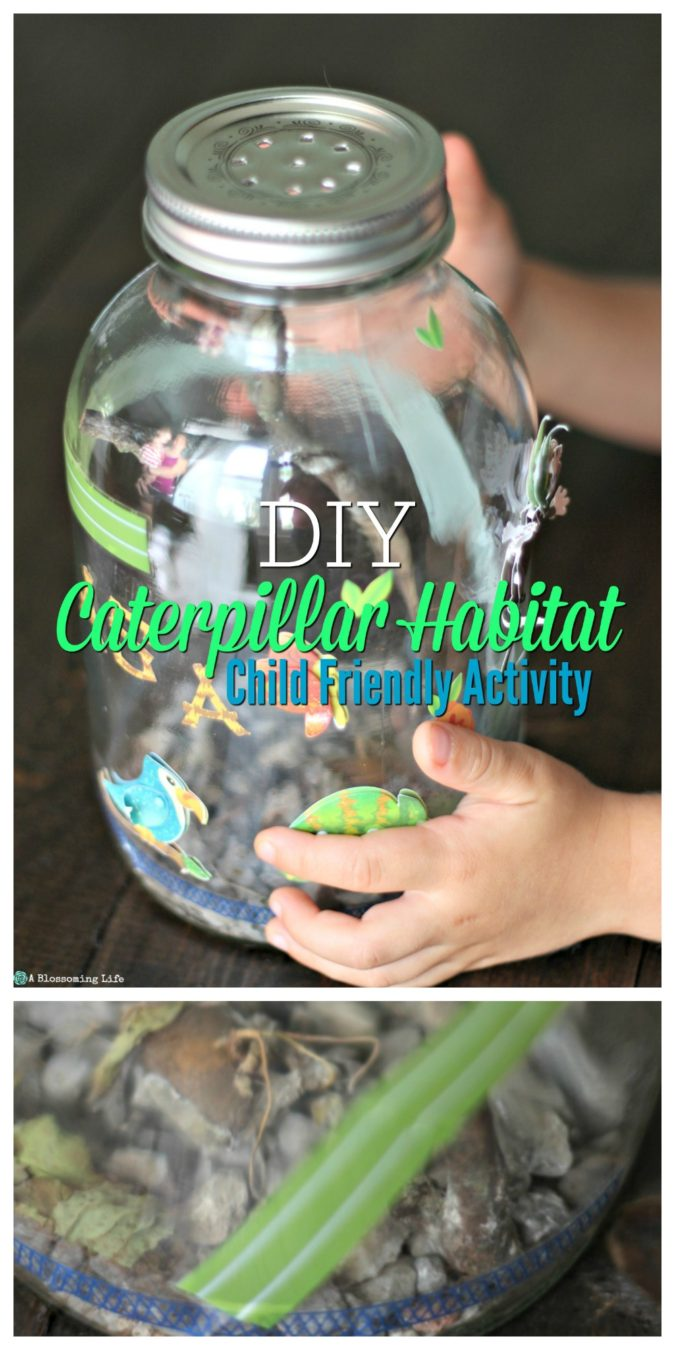 DIY Caterpillar Habitat - great activity for kids