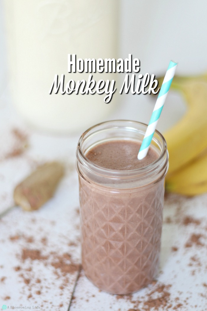 Homemade Monkey Milk – Sugar Free Healthy Drink