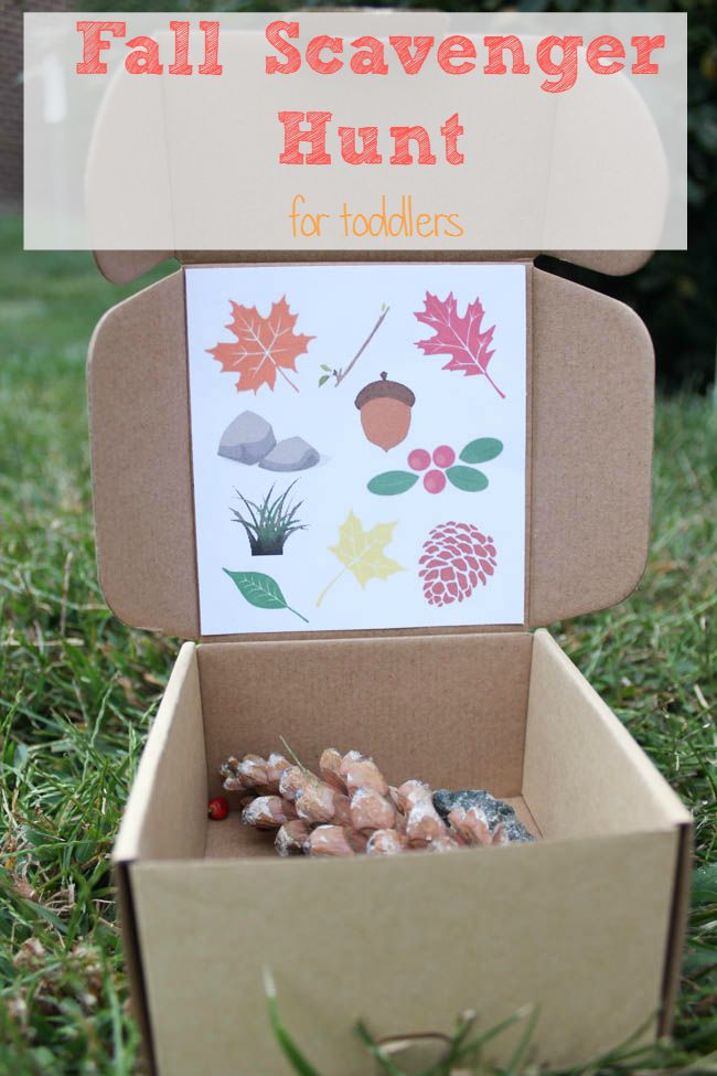 box of natural items for a fall scavenger hung fall activities for preschoolers