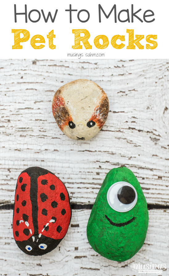 fall activities for preschoolers - picture of pet rocks