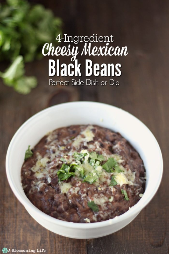 white bowl full of cheesy Mexican black beans topped with cheese and cilantro