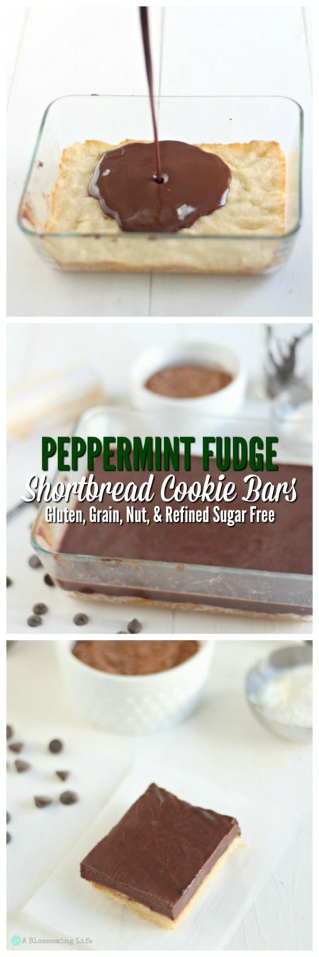 peppermint-fudge-shortbread-cookie-bars-gluten-grain-nut-and-refined-sugar-free