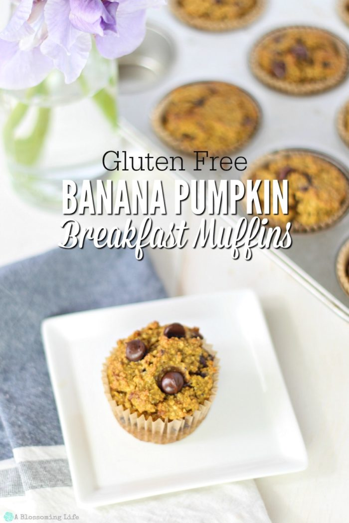 Banana Pumpkin Breakfast Muffins