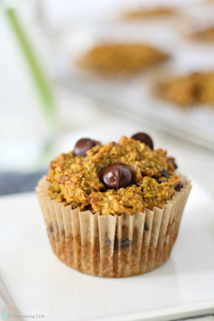 up close of a gluten free pumpkin muffin with chocolate chips with more muffins in a muffin tin behind it