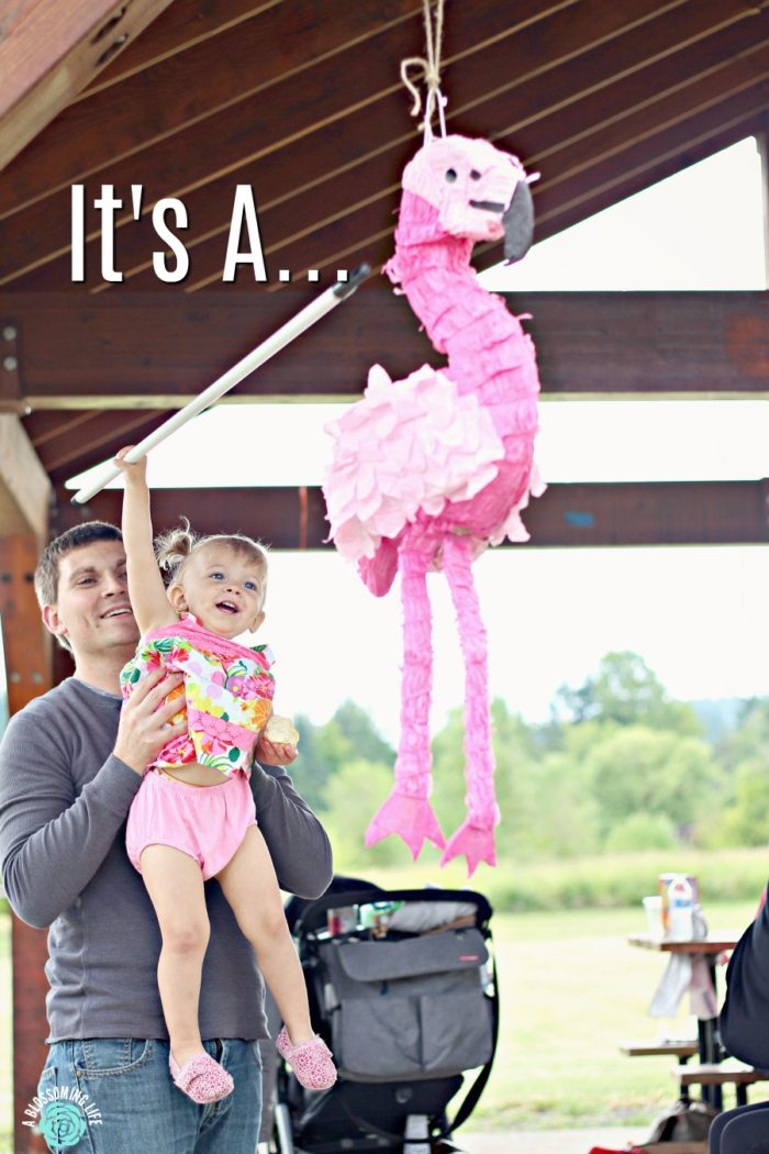 Baby #2 Is A….