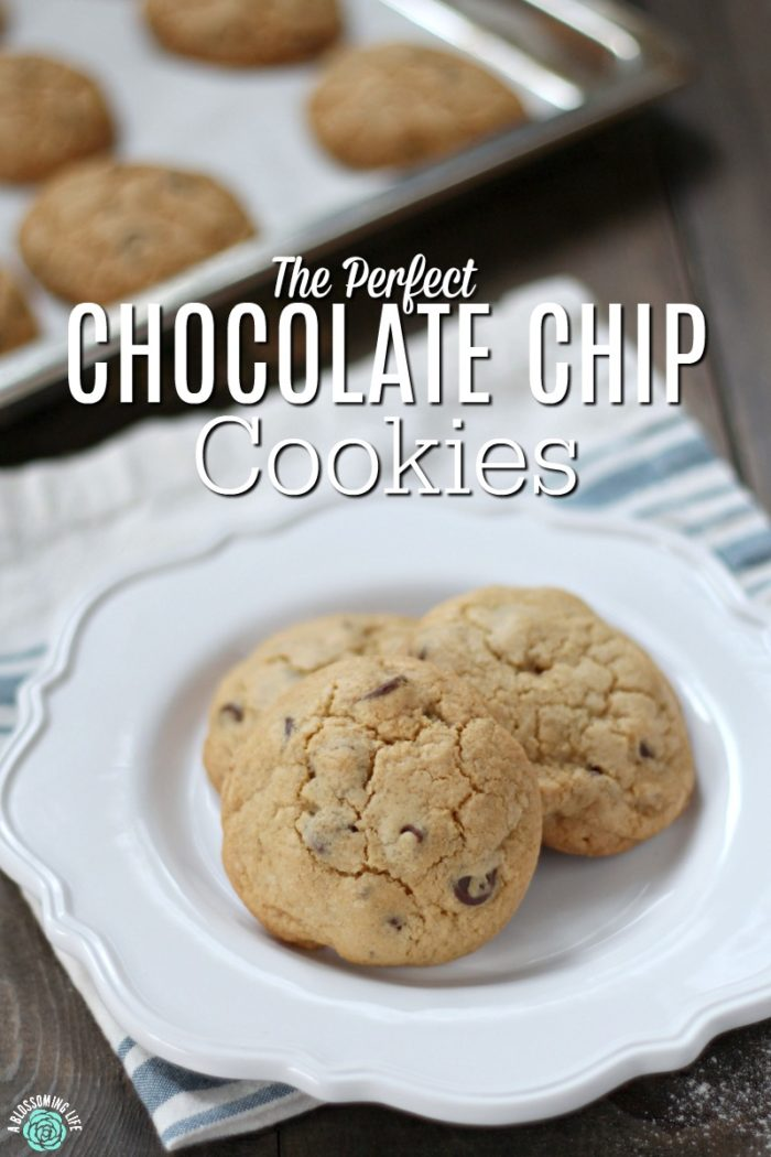 Not My Momma's Chocolate Chip Cookies- These are the perfect soft and buttery chocolate chip cookie with a secret ingredient that make them irresistible.