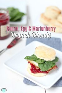 Bacon, Egg, and Marionberry Brunch Biscuits