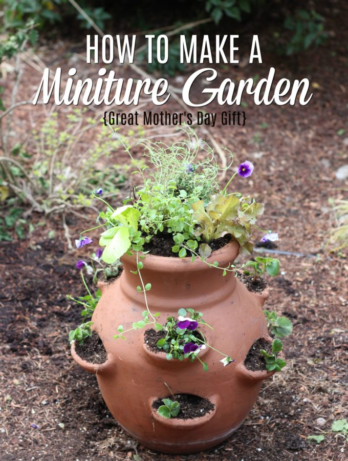 How To Make a Miniature Edible Garden
