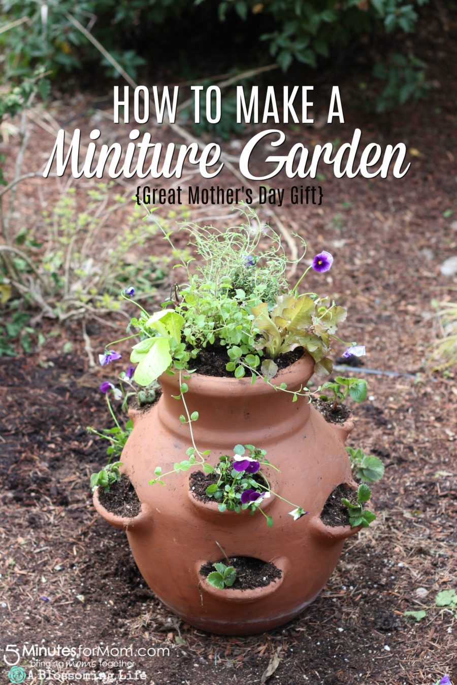 How To Make a Miniature Edible Garden