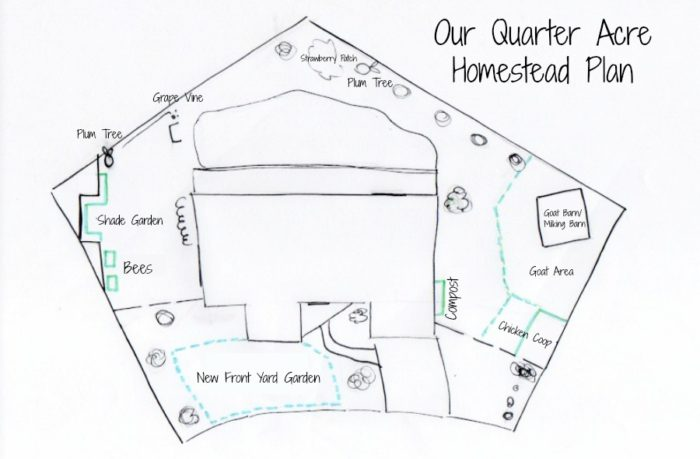 Creating A Homestead On A Quarter Acre - Tour And Plan - A ... on 5 acre homestead layout, homestead barn layout, backyard homestead layout, homestead farms and gardens, homestead garden layout, small homestead layout, mini farming garden layout, homestead water filtration, 1 4 acre homestead layout, best homestead layout, homestead golf course layout,