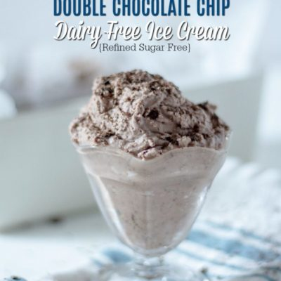 ouble Chocolate Chip Dairy Free Ice Cream