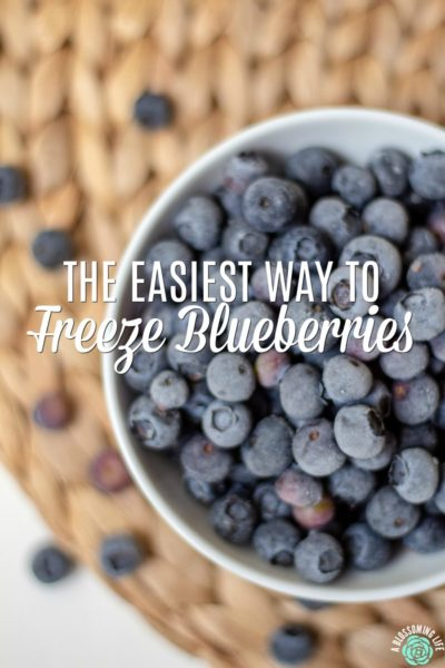 How To Freeze Blueberries- The Easiest Way Ever {Video Tutorial}