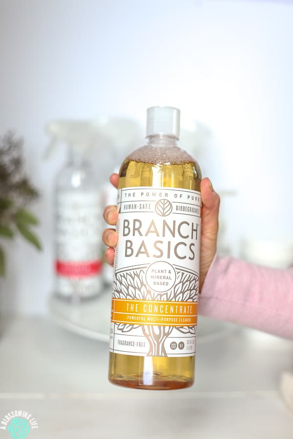 Hand holding Branch Basics concentrated formula with empty cleaning bottles behind it and eucalyptus in the back.
