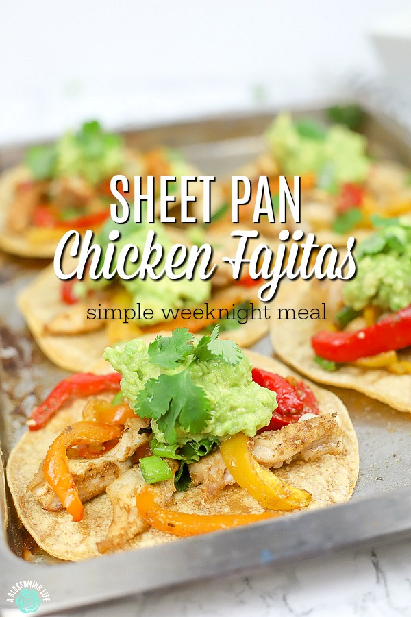 sheet pan chicken fajitas on corn tortillas on a baking sheet with more fajitas behind it