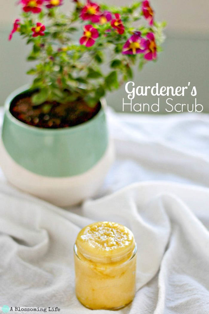 DIY hand scrub in a small glass jar on top a white towel with a pot of lowers in the background